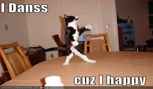 funny-pictures-dancing-cat