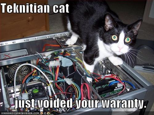 technician cat