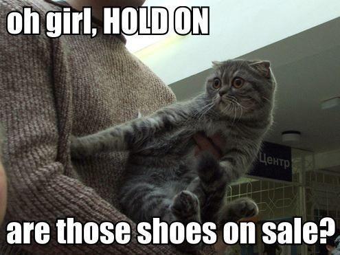 cat_sale